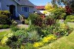 dom z ogródkiem